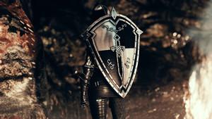 DX Dark Knight Armor
