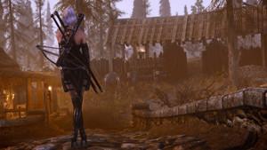 DX Witcher Armor