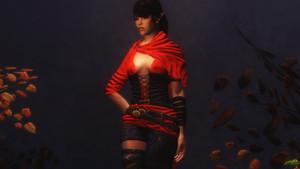 Scarlet Dawn Armor